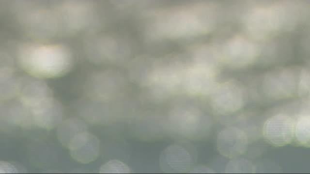 gvs brighton and white goods; england: brighton ext gvs brighton beach and pier and seagulls / name 'brighton pier' / sun sparkling on sea / shots of... - ブライトン パレスピア点の映像素材/bロール