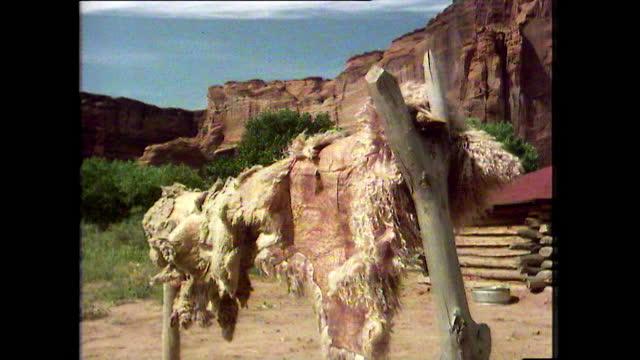 gvs life in a navajo hogan settlement in canyon de chelly, arizona; 1979 - canyon de chelly stock videos & royalty-free footage