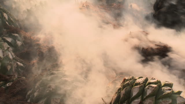 gvs mezcal distillery process, mexico - fossil fuel stock videos & royalty-free footage