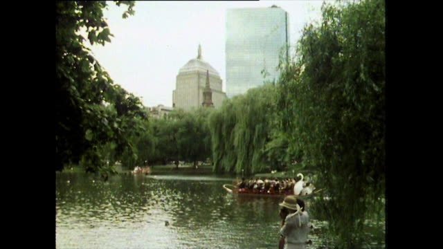 gvs of boston common park and lagoon in 1984 - trauerweide stock-videos und b-roll-filmmaterial