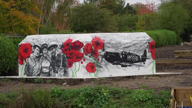 gvs of dame vera lynn and a spitfire have been painted onto two sides of a world war two pillbox on the banks of the river thames near benson in... - war stock-videos und b-roll-filmmaterial