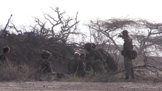 gvs of the royal highland fusiliers 2nd battalion the royal regiment of scotland taking part in training exercise exercise askari storm in kenya - battalion stock videos and b-roll footage
