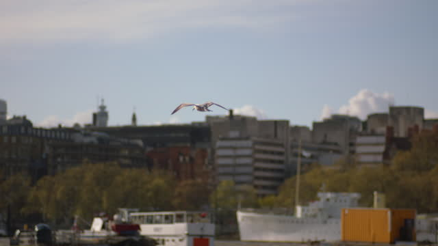 gvs river thames, london - general view stock videos & royalty-free footage