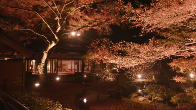 """vídeos de stock, filmes e b-roll de gyorakuen was designated as a scenic spots by fukuoka pref in 1978 the garden was built for the expression of the wish to the peace by """"sesshu"""" the... - washitsu"""
