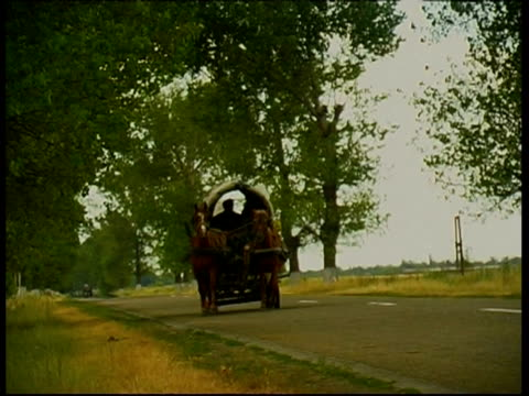 gypsy carriage on the road to brasov, romania - siebenbürgen stock-videos und b-roll-filmmaterial