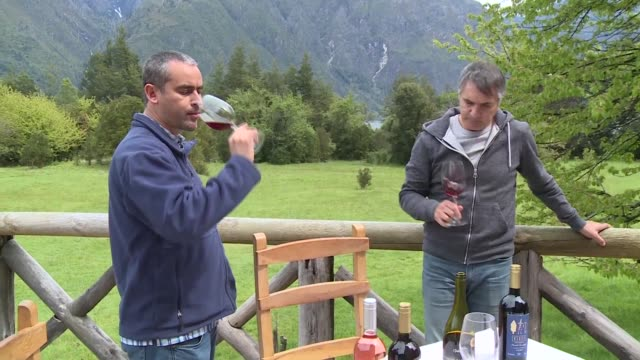 vídeos de stock, filmes e b-roll de hace una decada parecia imposible producir un vino en la patagonia chilena pero el cambio climatico esta permitiendo la elaboracion de un caldo de... - vino