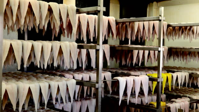 stockvideo's en b-roll-footage met haddock is hung to dry before being hung in the chimney to be smoked at alfred enderby ltd fish smokers on grimsby fish docks on october 8 2018 in... - {{relatedsearchurl(carousel.phrase)}}