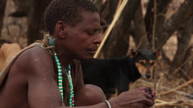hadzabe men eating by the fire 5 - only mature men stock videos & royalty-free footage