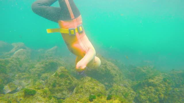 Haenyeo(Jeju female professional diver) under water of Jeju ocean