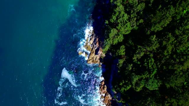 Hahei Bay Aerial View