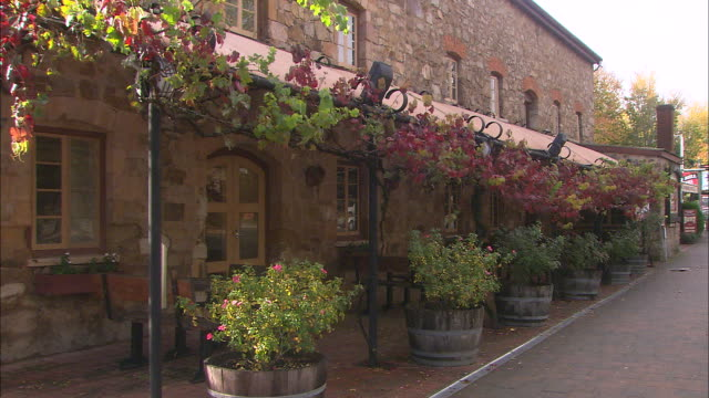 hahndorf exterior stone building grape vine runs along awning trellis some autumn red colour in leaves / shrubs in half wine barrel pots line... - awning stock videos & royalty-free footage