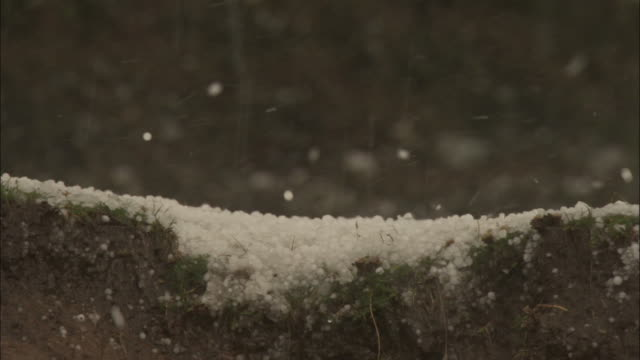 hail bouncing on ground, chopta, india available in hd. - ヒョウ点の映像素材/bロール