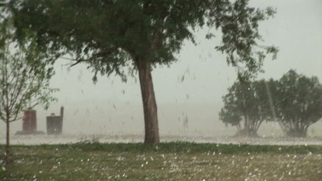 hail stones falling - extreme weather stock videos & royalty-free footage