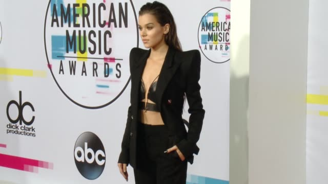 hailee steinfeld at 2017 american music awards on november 19 2017 in los angeles california - american music awards video stock e b–roll