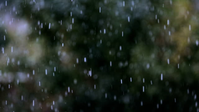 hailstorm - trees on backgorund - weather stock videos & royalty-free footage