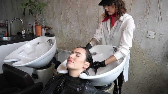 ヘアドレッサーと若い女性が彼女の髪を死ぬ - 美容専門家点の映像素材/bロール
