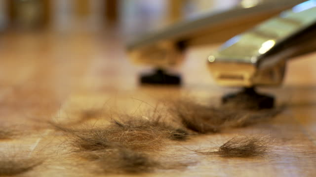 hair falling on floor before hair transplant - cutting hair stock videos and b-roll footage
