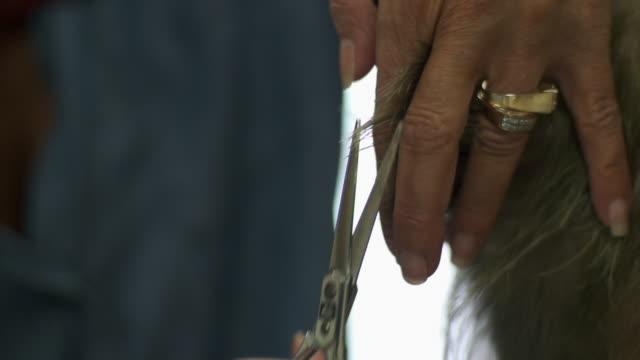 hairdresser cutting elderly woman's hair - grey hair stock videos & royalty-free footage