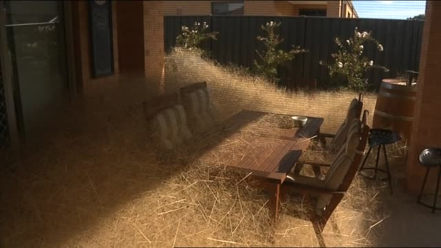 vídeos de stock e filmes b-roll de hairy panic tumbleweeds piled up outside house / covering outdoor setting/ yard covered point of view from inside house seen through window / piled... - descuidado