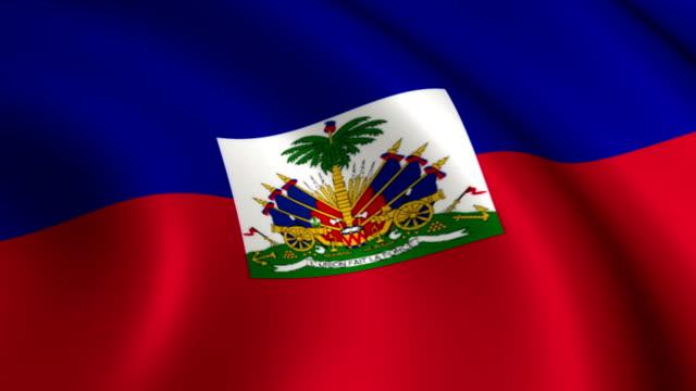 haiti flag loopable - flag haiti stock videos & royalty-free footage