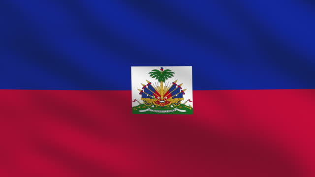 haiti flag - afro caribbean ethnicity stock videos and b-roll footage