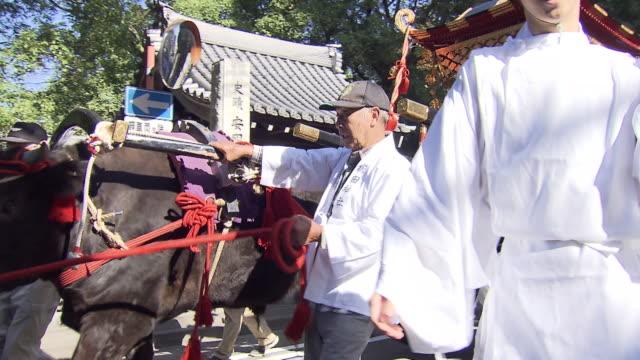 Hakata Okunchi Festival is a traditional thanksgiving festival which has been held for more than 1200 years at Kushida Shrine in Hakata Fukuoka Japan...