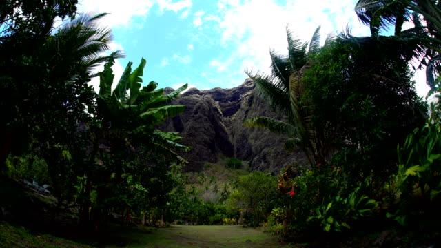 hakaui nuku hiva volcanic mountains lush vegetation marquesas - polynesischer abstammung stock-videos und b-roll-filmmaterial