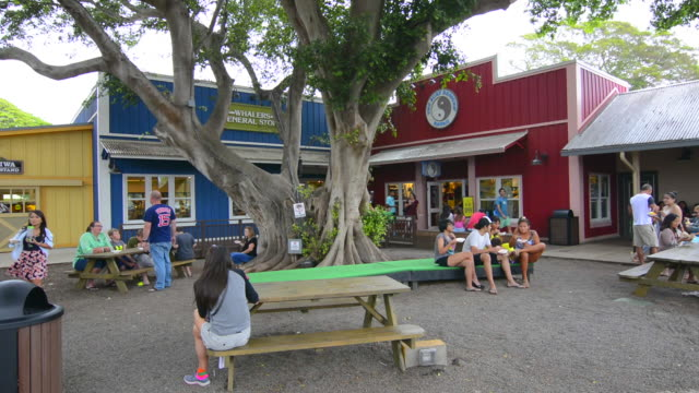 haleiwa hawaii oahu north shore old town shops strip mall with shops and tourists - oahu stock videos and b-roll footage