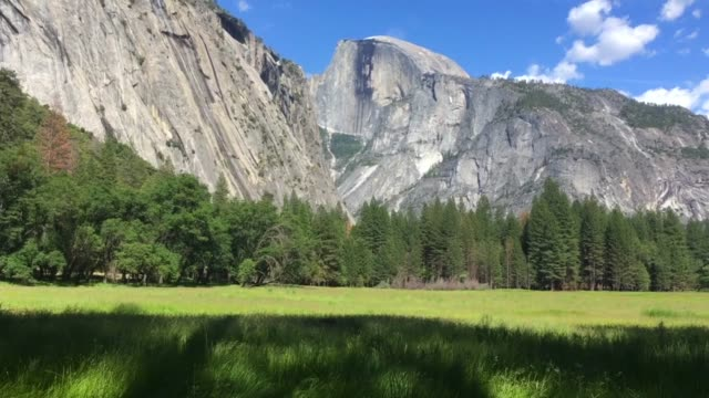 half dome and deer at yosemite national park in california - half dome stock videos & royalty-free footage