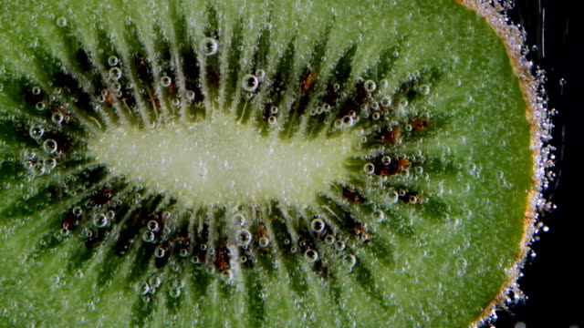 half of kiwi in sparkling water - mgost stock videos and b-roll footage