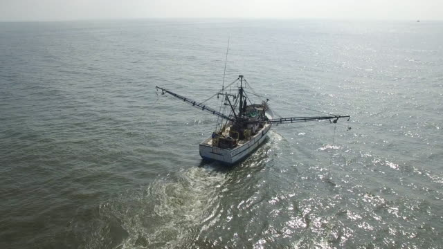 half orbit around back of shrip fishing boat - drone aerial view 4k prawn fishing, shrimp boat, trawler, trawling for ocean fish in the open sea, heavy waves and nets in the water on louisiana, mississippi coast, gulf coast 4k transportation - fischereiindustrie stock-videos und b-roll-filmmaterial
