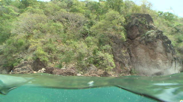 ms half rocks and rocky reef / caribbean, dominica - surface level stock videos and b-roll footage