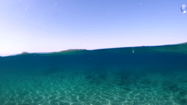 half underwater sea - transparent stock videos & royalty-free footage