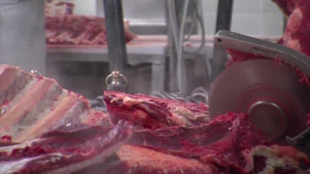 hallan carne de caballo en lasanas congeladas en alemania informo el jueves el distribuidor voiced carne de caballo en alemania on february 14 2013... - lasagna stock videos & royalty-free footage