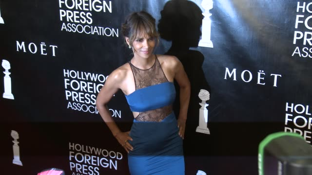 vídeos de stock, filmes e b-roll de halle berry at the hollywood foreign press association's annual grants banquet dinner at the beverly wilshire four seasons hotel on august 13 2015 in... - halle berry