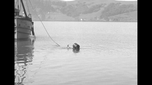 halley hamlin, inventor of the sea tractors, backs into diving apparatus / hand pulls levers up and down / two men place cover over apparatus / sea... - ta ner bildbanksvideor och videomaterial från bakom kulisserna