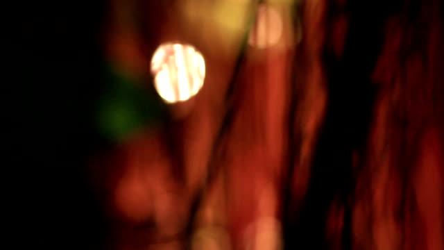 vídeos de stock, filmes e b-roll de halloween: misty's bokeh - sombra em primeiro plano