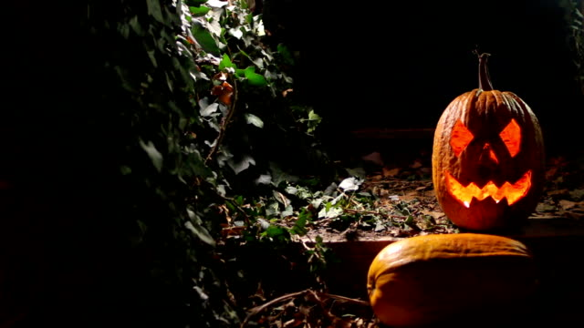 halloween pumpkin, jack o lantern - stage costume stock videos & royalty-free footage