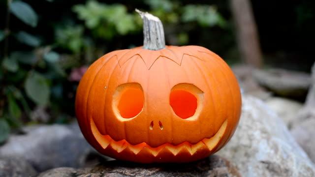 halloween pumpkin jack o'lantern - pumpkin stock videos & royalty-free footage