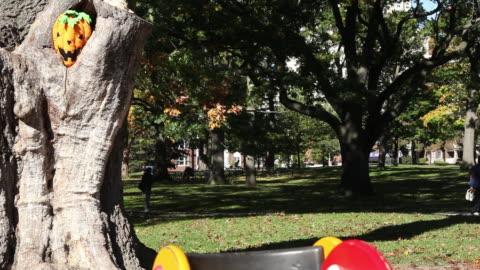 ms halloween pumpkin mask in tree in park / toronto, ontario, canada - kelly mason videos stock videos & royalty-free footage