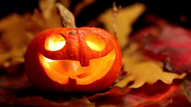 halloween pumpkin - halloween wallpaper stock videos and b-roll footage