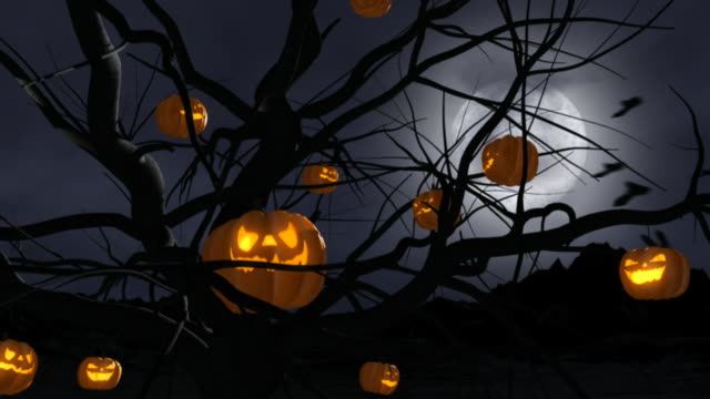 halloween pumpkins, close up - jack o' lantern stock videos and b-roll footage