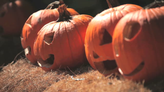 halloween pumpkins - carving craft product stock videos & royalty-free footage