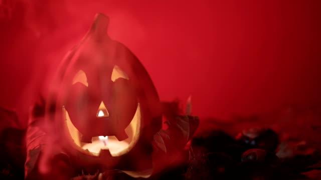 vídeos y material grabado en eventos de stock de víspera de todos los santos - calabaza no comestible