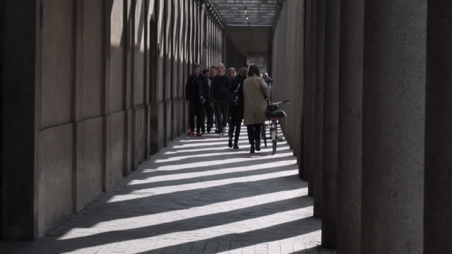 hallway in the royal library in copenhagen - 公共図書館点の映像素材/bロール
