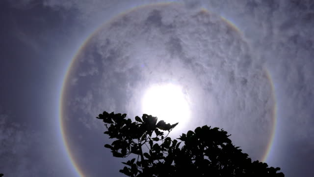 輝く青空、タイで太陽の周りハローします。 - 真下からの眺め点の映像素材/bロール
