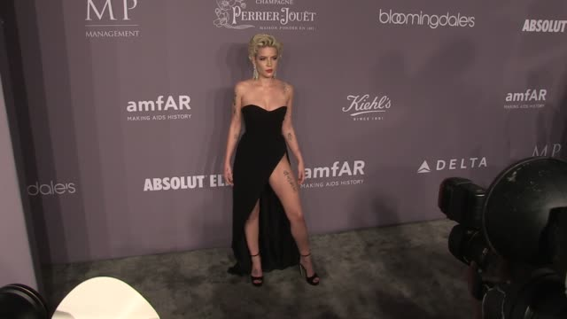 Halsey on the red carpet of the 2018 amfAR Gala New York at Cipriani Wall Street New York City NY USA on Wednesday February 7 2018
