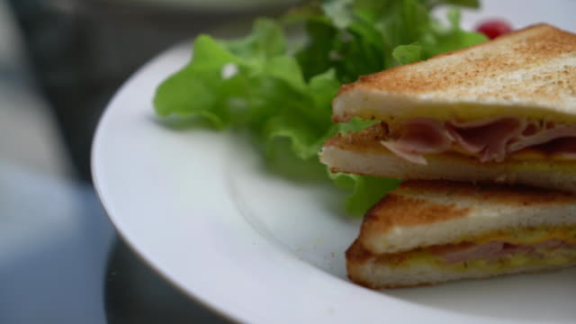 ham and cheese sandwich with salad