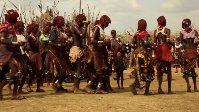 hamar tribe during the bull jumping ceremony the young women are dancing and provocating the young men during the whipping ritual omo river ethiopia - corno d'africa video stock e b–roll