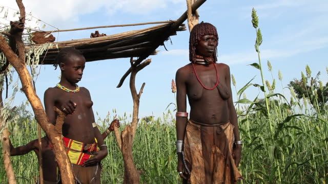Hamer tribe people watching a grain field Omo river Ethiopia